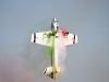 Horizon Hobby Airmeet 2013